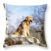 Golden Retriever Dog On Logs Throw Pillow