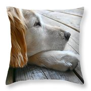 Golden Retriever Dog Waiting Throw Pillow