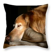 Golden Retriever Dog With Master's Slipper Throw Pillow by Jennie Marie Schell