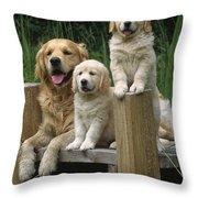 Golden Retriever Dog With Puppies Throw Pillow