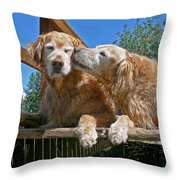 Golden Retriever Dogs The Kiss Throw Pillow