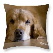 Golden Retriever Missing You Throw Pillow by James BO  Insogna
