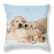 Golden Retriever Puppies Asleep Throw Pillow
