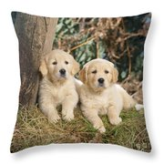 Golden Retriever Puppies In The Woods Throw Pillow