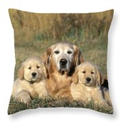Golden Retriever With Puppies Throw Pillow