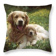 Golden Retrievers Dog And Puppy Throw Pillow