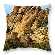 Golden Rocks Of Hidden Valley Throw Pillow