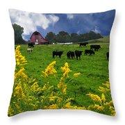 Golden Rod Black Angus Cattle  Throw Pillow