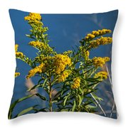 Golden Rods At Northside Park Throw Pillow