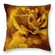 Golden Yellow Roses Throw Pillow