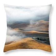 Golden Shadows Throw Pillow by Mike  Dawson