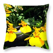 Golden Shower Or Dancing Lady Flower Throw Pillow