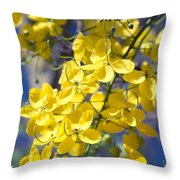Golden Shower Tree - Cassia Fistula - Kula Maui Hawaii Throw Pillow