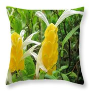 Golden Shrimp Plant Or Lollipop Plant Throw Pillow