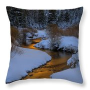 Golden Silence Throw Pillow