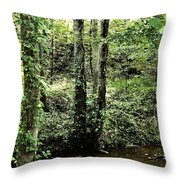 Golden Silence In The Forest Throw Pillow