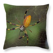 Golden Silk Spider 9  Throw Pillow