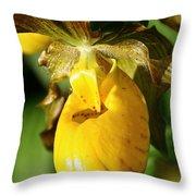 Golden Slipper Throw Pillow