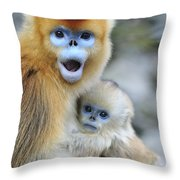 Golden Snub-nosed Monkey And Young China Throw Pillow