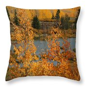 Golden Spot Throw Pillow