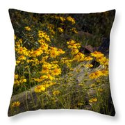 Golden Spring Flowers  Throw Pillow
