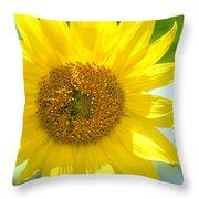 Golden Sunflower - 2013 Throw Pillow