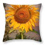 Golden Sunflower Throw Pillow by Adrian Evans