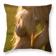 Golden Sunlight In The Mane Throw Pillow