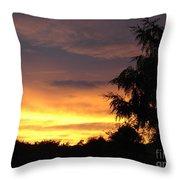 Golden Sunset 3 Throw Pillow
