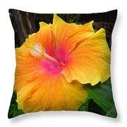 Golden Sunset Hybiscus Throw Pillow