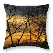Golden Twilight 2 Throw Pillow