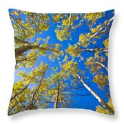 Golden View Looking Up Throw Pillow