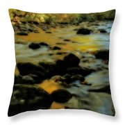 Golden View Of The Little River In Autumn Throw Pillow by Dan Sproul