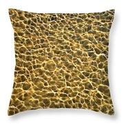 Golden Water Throw Pillow