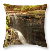 Golden Waterfall October In Ohio Throw Pillow