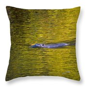 Golden Waters Throw Pillow