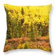Golden Yellow Fall Boreal Forest In Yukon Canada Throw Pillow