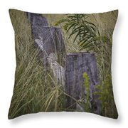 Goldenrod By The Fence Throw Pillow