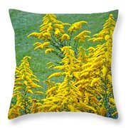 Goldenrod Flowers Throw Pillow