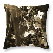 Goldenrod In Sepia Throw Pillow