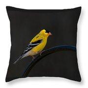 Goldfinch 3 Throw Pillow