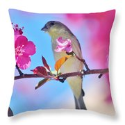 Goldfinch Behind Pink Blossoms 031015aaa Throw Pillow