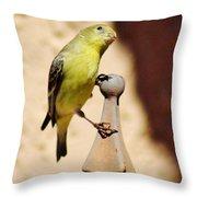 Goldfinch Contemplating 031015ac Throw Pillow