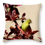 Goldfinch In Tree 031015a Throw Pillow