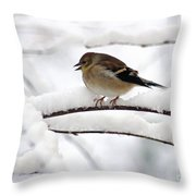 Goldfinch On Snowy Branches Throw Pillow