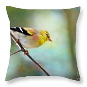 Goldfinch With Rosy Shoulder - Digital Paint IIi Throw Pillow
