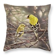 Goldfinches In The Rain Throw Pillow