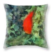 Goldfish Photo Art 04 Throw Pillow