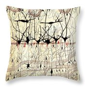 Golgi Olfactory Bulb Of Dog Throw Pillow