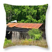 Gone Home Throw Pillow
